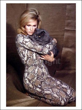 Ursula Andress in cat dress